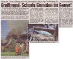 Kronen Zeitung Nachberichterstattung