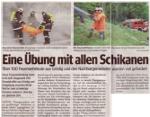 Salzburger Bezirksblätter